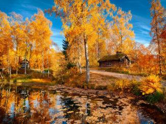 Ах, какая осень!